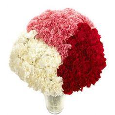 Carnations reflect our mood. A white & red carnation is for pure love, yellow carnation is for well wishes. Send Carnations to Greeceon Mother's Day Diy Wedding Flowers, Send Flowers, Wedding Ideas, Garden Wedding, Wedding Stuff, Dream Wedding, Wedding Decorations, Wholesale Flowers Online, Flowers For Valentines Day