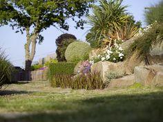 """Le paysagiste Eric Lequertier a aussi joué avec les couleurs, le graphisme et des variétés de vivaces aux floraisons variées en fonction de l'année. Un rosier couvre-sol blanc (variété """"des Pyrénées"""") côtoie ainsi un palmier de petite taille (Cordyline indivisa), un cotonéaster, des Diascia rigescens et des campanules. Au fond du jardin sous le chêne, le soutènement a été fait avec des traverses en bois exotique (azobé) et non avec des blocs de roches du fait d'un terrain moins large."""
