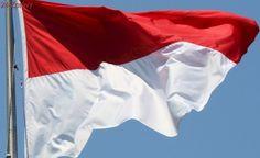 Na indonéských ostrovech hoří, byl vyhlášen stav nouze