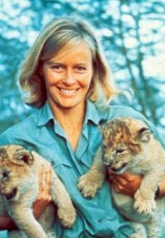 virginia mckenna imdbvirginia mckenna md, virginia mckenna imdb, virginia mckenna bio, virginia mckenna bill travers, virginia mckenna son, virginia mckenna biography, virginia mckenna nick knowles, virginia mckenna lawyer, virginia mckenna born free foundation, virginia mckenna images, virginia mckenna poem, virginia mckenna obe, virginia mckenna height, virginia mckenna books, virginia mckenna family, virginia mckenna quotes, virginia mckenna grandchildren, virginia mckenna a town like alice, virginia mckenna the life that i have, virginia mckenna golden years