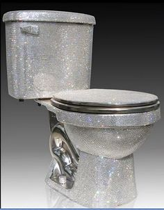 Swarovski crystal toilet! I'm a girly girl so yah I would have this in my bathroom..lol..