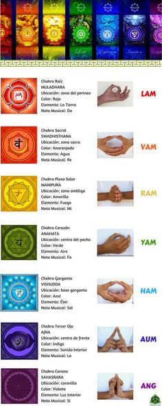 Los 7 chakras son centros de energía no medibles que se encuentran en el cuerpo… The 7 chakras are non-measurable energy centers that are found in the human body and influence us on a psychological level. Very used in reiki and other therapies. Yoga Mantras, Yoga Meditation, Kundalini Yoga, Zen Yoga, Yoga Quotes, Chakra Mantra, Chakra Healing, 7 Chakras, Chakra Raiz