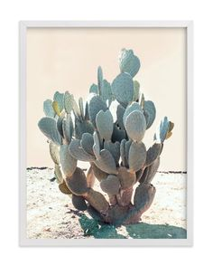 """Blue Cactus"" - Art Print by Wilder California in beautiful frame options and a variety of sizes."