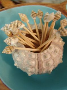 Sea Shell Topped Toothpicks for Beach Weddings, Parties, and Other Sea Side Events One Package of 100