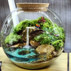 38 Fantastic Ideas For Beautiful DIY Terrariums Mini Terrarium, Terrarium Scene, Cactus Terrarium, Garden Terrarium, Terrarium Ideas, Terrarium Closed, Water Terrarium, Terrarium Wedding, Succulent Care