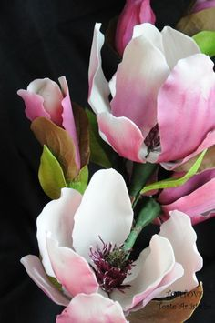 This is an interesting tutorial for the Saucer Magnolia. However I think you would have to have some experience working with gumpaste flowers to quite understand what she is doing in each step.