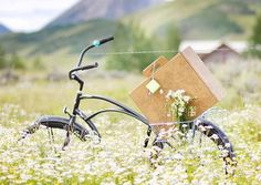 Biodegradable picnic boxes with compostable utensils, etc. Frivolous but cute.