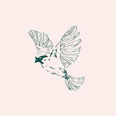 Bird Illustration by Wayfarer Design Studio  Design, branding, brand, brand identity, logo, logos, graphic design, identity, web, website, website design, editorial, magazine, print, business card, illustration, fashion, boutique, summer, bird, floral