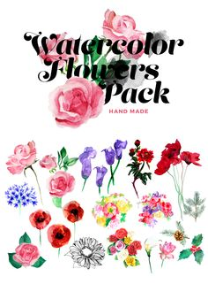 Watercolor flower pack by Liviu on Creative Market #designtoold #watercolor #illustration #download