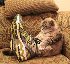 do these shoes look big on me??
