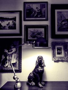 Photography by Frank Brandwijk I 'Dog just sitting there' 'Bloodhound' 'Livingroom' 'Black and White'