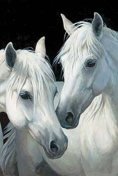 "Discover thousands of images about Persis Clayton Weirs Original Acrylic Painting:""Stable Mates-Horses"" Cute Horses, Pretty Horses, Horse Love, Beautiful Horses, Animals Beautiful, Horse Photos, Horse Pictures, Horse Drawings, Animal Drawings"