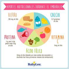 Aportes Nutricionales Durante El Embarazo
