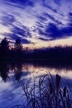 ✯ Blue Hour