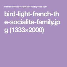 bird-light-french-the-socialite-family.jpg (1333×2000)