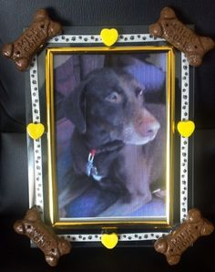 Decorated #icture Frame for Your #Dog by @VanWinkles Market #VanWinklesCountryMarket #ArtFire
