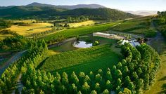 The Yarra Valley is the name given to the region surrounding the Yarra River in Victoria, Australia. The river originates approximately 90 kilometres east of the City of Melbourne and flows towards it and out into Port Phillip Bay.