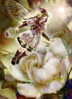 Miharu Yokota is an artist from Tokyo, Japan.