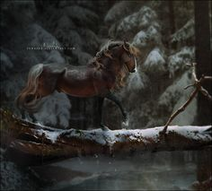 Pretty Horses, Beautiful Horses, Fantasy Paintings, Fantasy Art, Majestic Horse, Horse Drawings, Equine Art, Medieval Fantasy, Horse Art