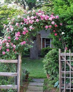 Beautiful rose hedge. In my Garden, I want a flower hedge,no matter what kind of flowers they are