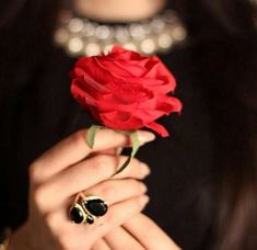 Red rose w black ring & background Profile Picture Images, Profile Picture For Girls, Flower Drawing Images, Hotel Paris, Hand Photography, Girls With Flowers, Girls Hand, Girly Pictures, Girls Dpz