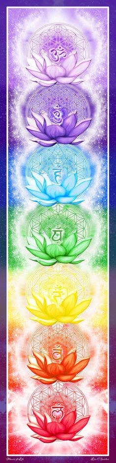 Chakra Banner Sticker 25 x 10 Flower of Life Sacred Geometry Beautiful Yoga Art Reiki Spiritual Art * You can find out more details at the link of the image. Chakra Art, Chakra Symbols, Chakra Healing, Sanskrit Symbols, Heart Chakra, Yoga Kunst, Les Chakras, Yoga Studio Design, Yoga Art