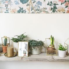 @mliees knows how to style some of 2016's biggest trends: botanic and shiny metals.