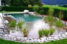 Natural Pool Ideas On Home Backyard 51