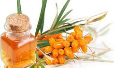 Ulei de catina – proprietati in cosmetica Datorita vitaminelor A si E pe care le contine, uleiul obtinut din catina are proprietati terapeutice foarte puternice. Produsul are efecte regenerante, de intinerire. Continut de coenzima Q10.