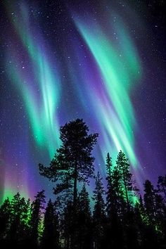 "Natural Wonder of the World #5: Northern Lights - Aurora Borealis Seen this, in Northern Canada....I just need to see the other 6 ""sigh"""