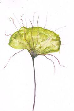 Olive green Organic Spring Flower  Art  Watercolor  by mallalu, $59.00