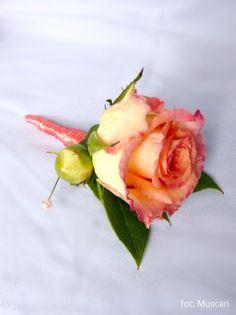 Butonierka z koralowej róży