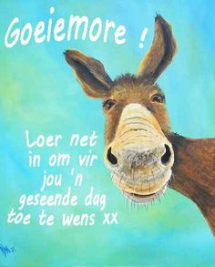 Good Morning Good Night, Good Morning Wishes, Morning Messages, Lekker Dag, Afrikaanse Quotes, Goeie More, Morning Inspirational Quotes, Monday Quotes, Special Quotes