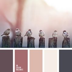 Colors of winter morning - light pink and brown. Very softy.  Color inspiration for design, wedding or outfit. More color pallets on color.romanuke.com.