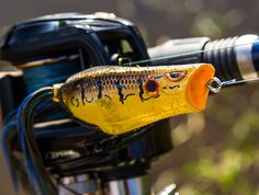 Narrowing down your bank fishing tackle selection can be quite difficult at times. Not all of us can afford high-dollar equipment, so we have to embrace simplicity and learn to catch fish with the gear we have available. Fortunately, bank fishing can be quite productive throughout the fall. Whether you're a full-time bank angler or ...