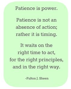 Patience is power. Patience is not an absence of action; rather it is timing. It waits on the right time to act, for the right principles, and in the right way.