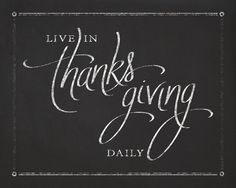Live In Thanksgiving Daily