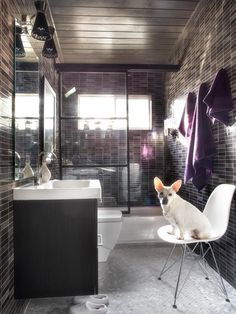 Browse pictures and get expert tips from a Palm Springs-inspired bathroom remodel featuring a black, white and gray color scheme. 2/2