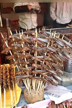 Edible Grasshoppers on skewers in Beijing, China