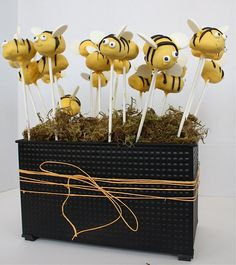 bees cake pops