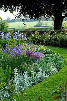 just another beautiful garden border