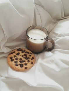Овсяное печенье с шоколадом и молоко
