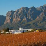 Vergelegen Winery, Jean de Gastines Architects Mountains, Gallery, Nature, Travel, Architects, Naturaleza, Viajes, Roof Rack, Destinations