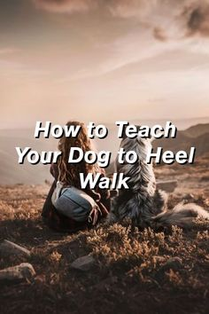 Baby Overalls Speak: How to Teach Your Dog to Heel Walk Online Dog Training, Dog Training Tips, Holiday Dog Treat Recipe, Protection Dog Training, Healthiest Dog Breeds, Dog Growling, Dog Pants, Best Dog Names, Dog Food Reviews