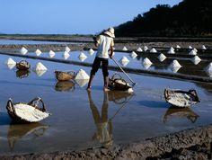 salt collector in Kampot delta, Cambodia