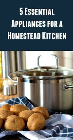 Urban Homesteading Basics - 5 essential appliances for a homestead kitchen, diy homesteading guide, gardening, garden, recipe