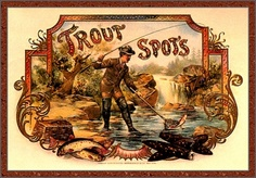 Trout Spots - vintage cigar label