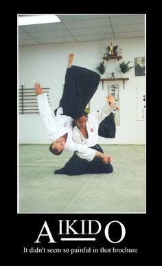 #aikido It's NEVER what it is in the brochure.