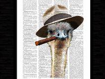 Struzzo, stampa, pagina dizionario,art,#ST02