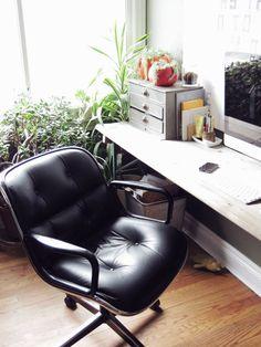desk plants